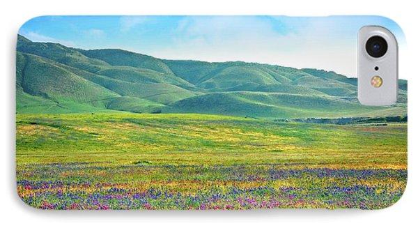 Tejon Ranch Wildflowers IPhone Case by Lynn Bauer
