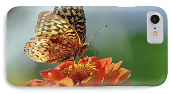 IPhone Case featuring the photograph Tenderness by Glenn Gordon
