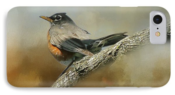 Teressia's Spring Robin  IPhone Case