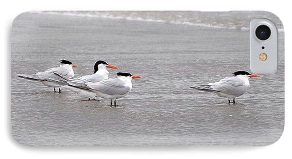 Terns Wading Phone Case by Al Powell Photography USA