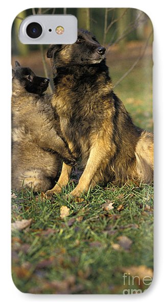 Tervuren Or Belgian Shepherd Dog IPhone Case by Gerard Lacz