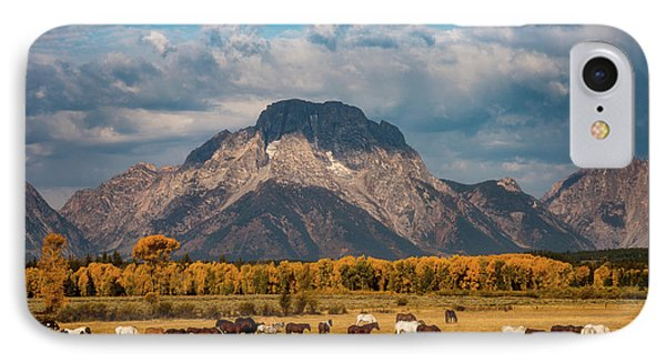 IPhone Case featuring the photograph Teton Horse Ranch by Darren White