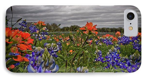 Texas Bluebonnets IPhone Case by Jill Smith