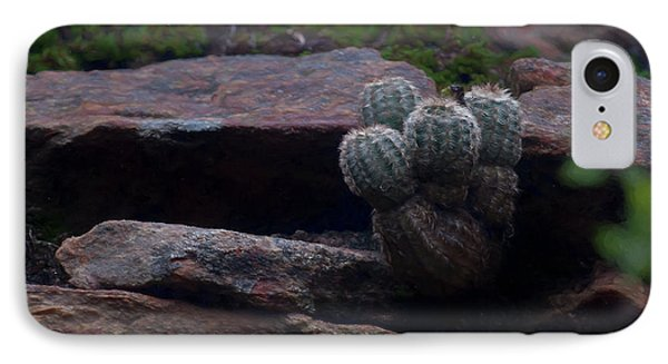 Texas Hill Country Cactus  IPhone Case by Travis Burgess
