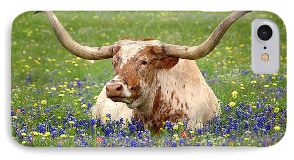 Texas Longhorn In Bluebonnets IPhone Case