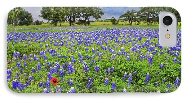 Texas Spring  Phone Case by Lynn Bauer