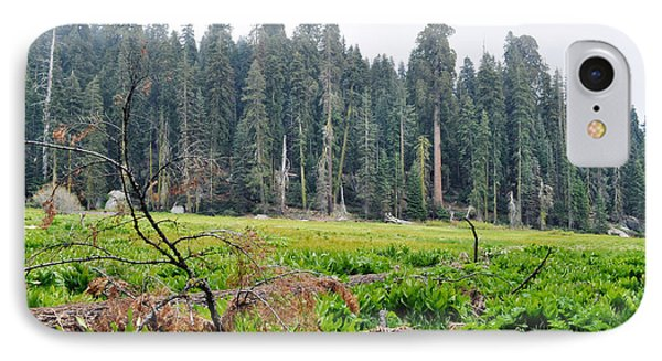 IPhone Case featuring the photograph Tharps Log Meadow by Kyle Hanson