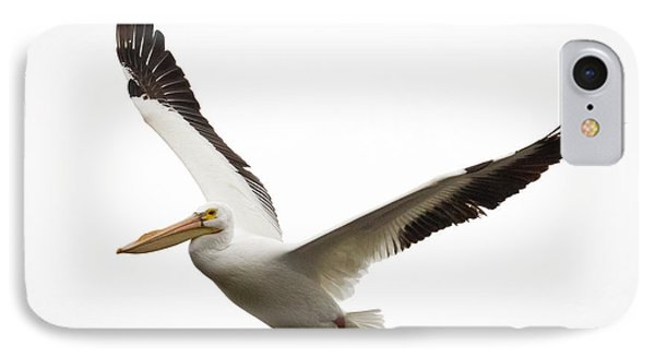 The Amazing American White Pelican Phone Case by Ricky L Jones