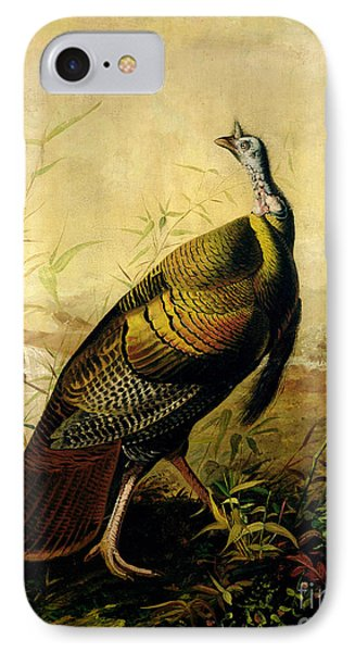 The American Wild Turkey Cock IPhone Case