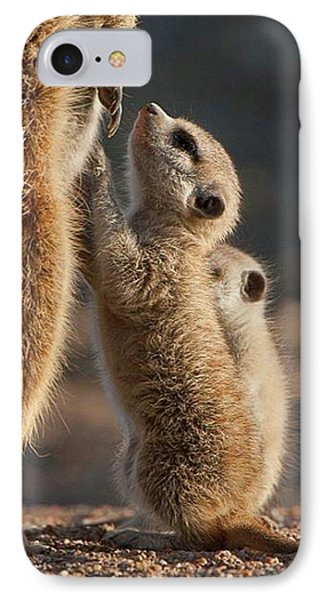 Meerkat iPhone 7 Case - The Baby Is Hungry by Happy Home Artistry