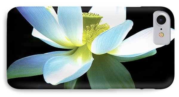 IPhone Case featuring the photograph The Beauty Of A Lotus by Julie Palencia