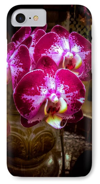 The Beauty Of Orchids IPhone Case