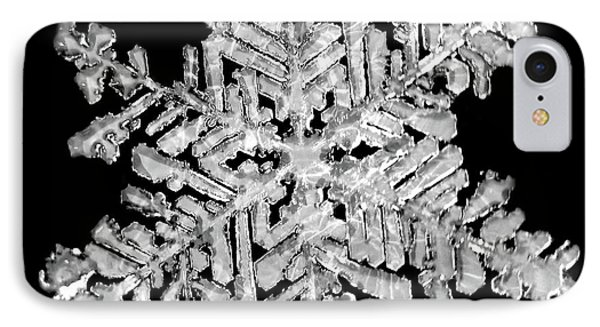 The Beauty Of Winter IPhone Case by Lauren Radke