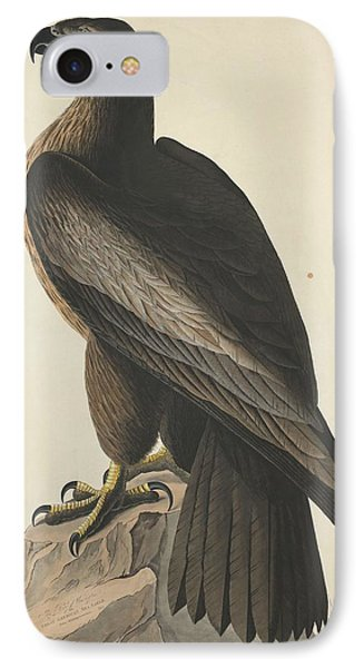 The Bird Of Washington Or Great American Eagle IPhone Case