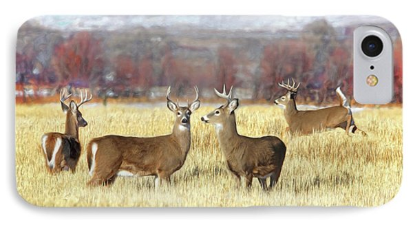 IPhone Case featuring the photograph The Bucks Stop Here White-tail Deer  by Jennie Marie Schell