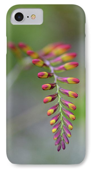 The Budding Arch IPhone Case