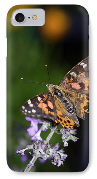 IPhone Case featuring the photograph The Butterfly Effect by Alex Lapidus
