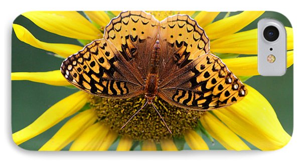 The Butterfly Effect IPhone Case by Tina  LeCour