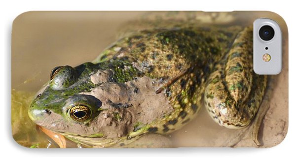 The Camouflage Frog IPhone Case by Lisa DiFruscio