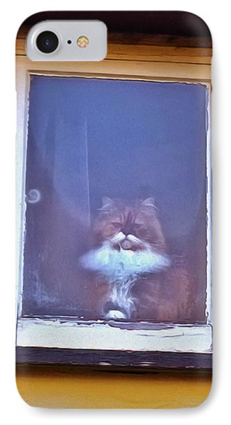 The Cat In The Window IPhone Case by Anne Kotan