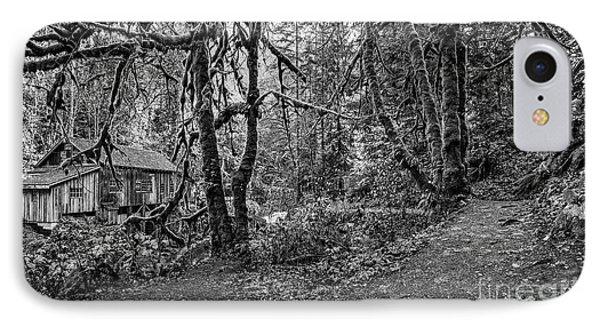 The Cedar Creek Mill Trail IPhone Case