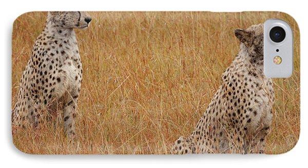 The Cheetahs IPhone 7 Case