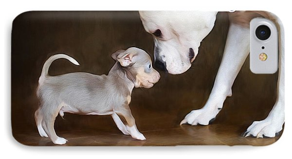 The Chihuahua Vs The Pity IPhone Case by Darren Fisher