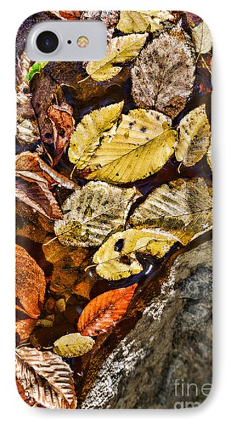 The Color Of Fall IPhone Case by Paul Ward