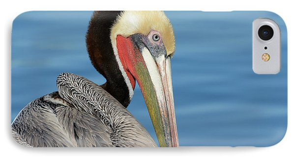The Colors Of Love IPhone Case by Fraida Gutovich