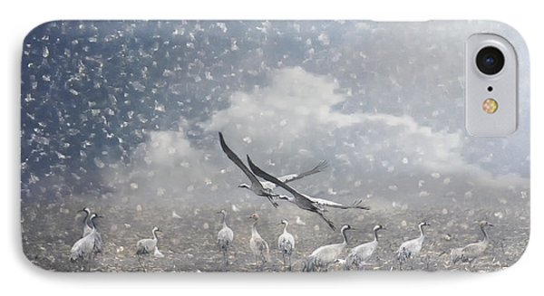 the cranes of Fischland IPhone Case