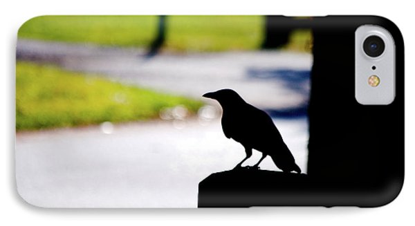 IPhone Case featuring the photograph The Crow Awaits by Karol Livote