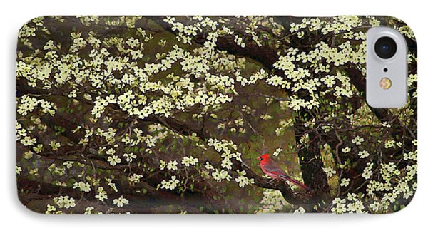 IPhone Case featuring the digital art The Dogwoods And The Cardinal by Darren Fisher