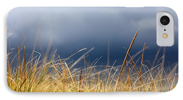 IPhone Case featuring the photograph The Tall Grass Waves In The Wind by Dana DiPasquale