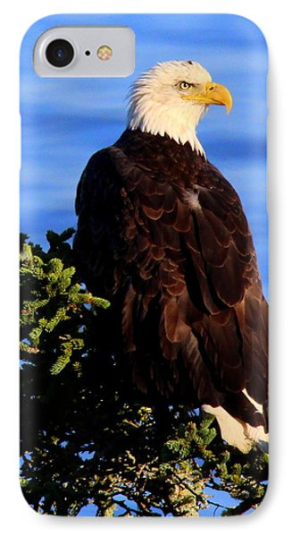 The Eagle Has Landed 2 IPhone Case