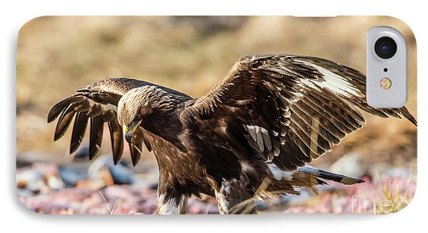 IPhone Case featuring the photograph The Eagle Have Come Down by Torbjorn Swenelius