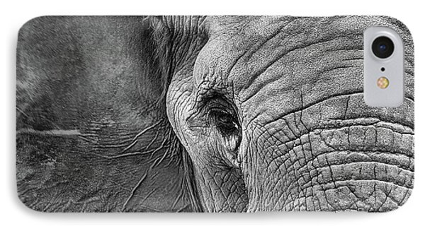 IPhone Case featuring the photograph The Elephant In Black And White by JC Findley