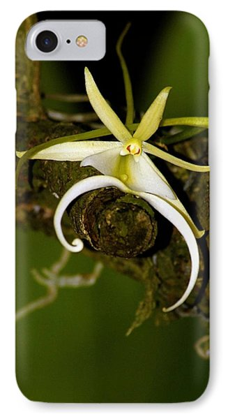 The Elusive And Rare Ghost Orchid IPhone Case