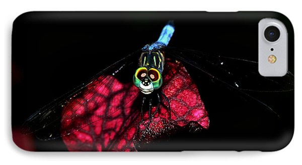 IPhone Case featuring the photograph The Face Of A Dragonfly 004 by George Bostian