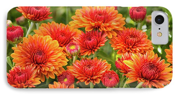 IPhone 7 Case featuring the photograph The Fall Bloom by Bill Pevlor