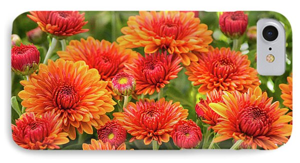 IPhone Case featuring the photograph The Fall Bloom by Bill Pevlor