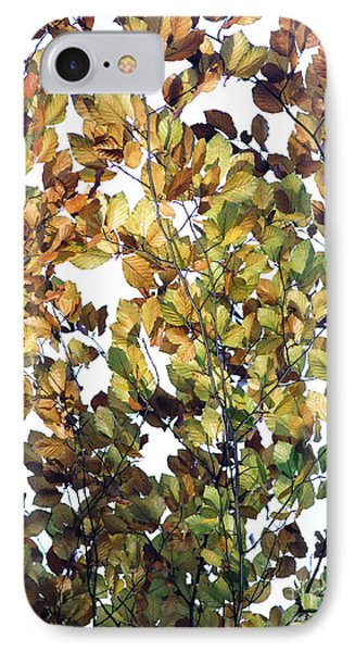 IPhone Case featuring the photograph The Fall by Rebecca Harman