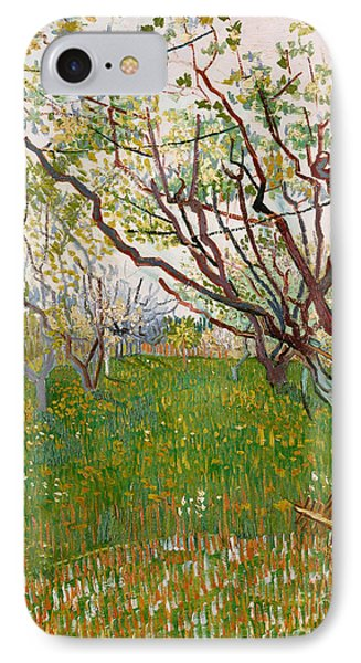 The Flowering Orchard, 1888 IPhone Case by Vincent Van Gogh