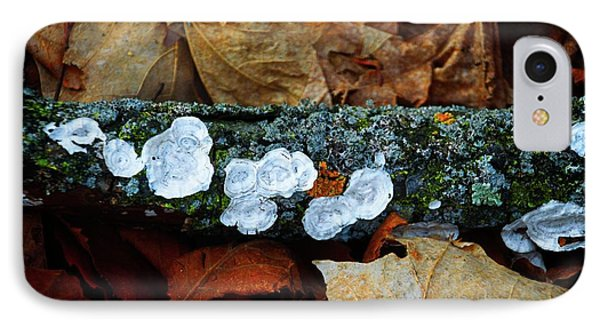 IPhone Case featuring the photograph The Forest Floor - Cascade Wi by Mary Machare