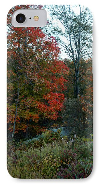 IPhone Case featuring the photograph The Forest by Joseph G Holland