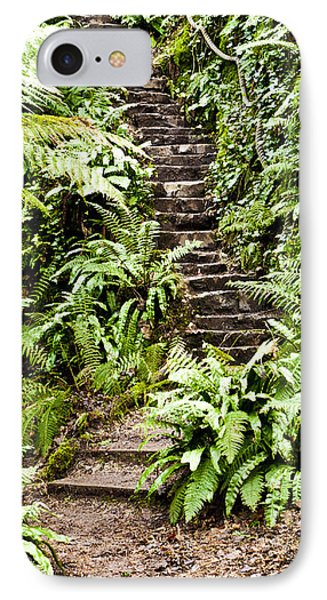 The Forest Stairwell Phone Case by Rae Tucker