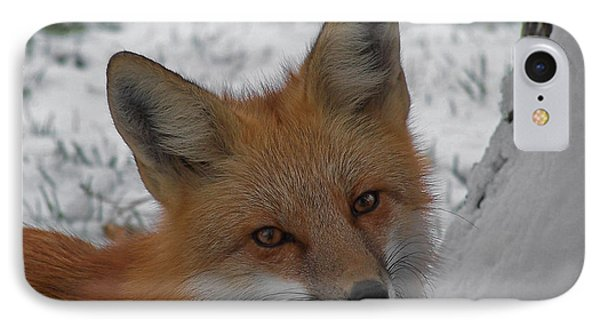 The Fox 4 Phone Case by Ernie Echols