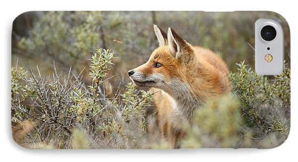The Fox And Its Prey IPhone Case by Roeselien Raimond