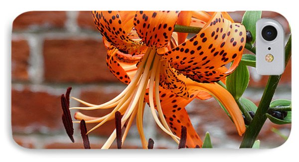The Garden Tiger Lily IPhone Case by Mike McGlothlen