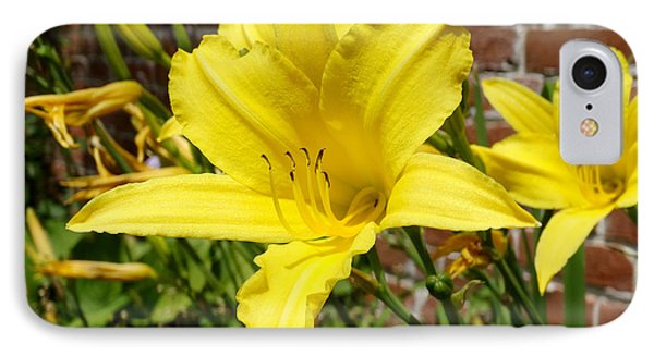 The Garden Yellow Lily IPhone Case by Mike McGlothlen