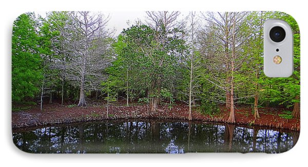 The Gator Hole At Green Cay In Florida IPhone Case by David Mckinney